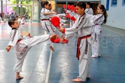 Quer treinar Taekwondo?